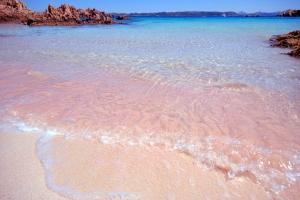 budelli-spiaggia-rosa 1