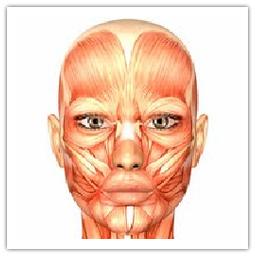 img_ginnastica_facciale-2